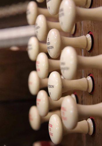 Organ-3